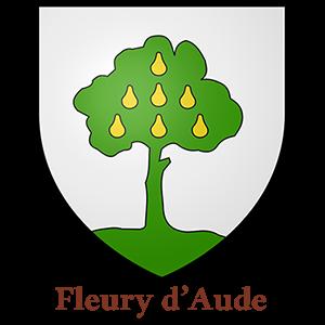 Commune de Fleury-d'Aude - utilisent des armoires BJARSTAL pour protéger leur registres d'état-civil.