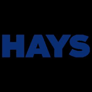 Hays- un client de BJARSTAL Armoire ignifuge, coffre-fort, chambre forte, armoire forte