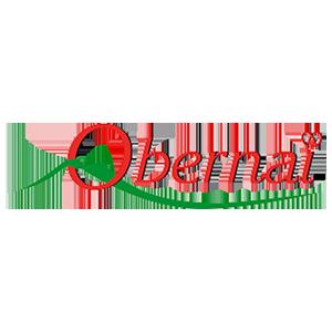 Ville d'Obernai- utilisent des armoires BJARSTAL pour protéger leur registres d'état-civil.